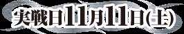 実戦日11月11日(土)